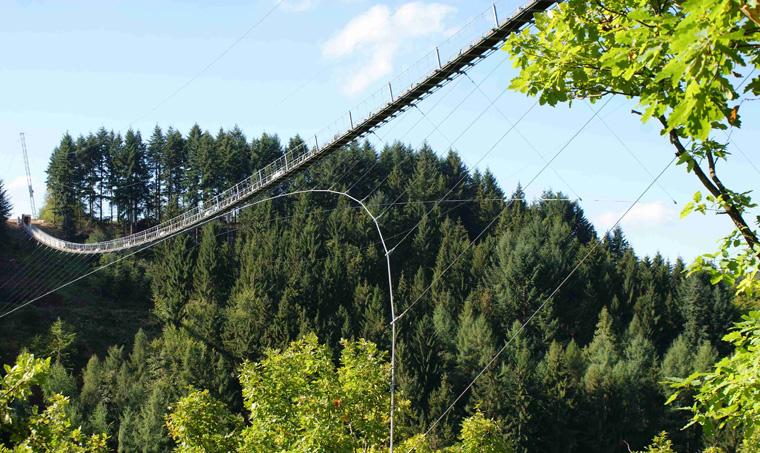 Für den Bau der Brücke wurde nur minimal in die Natur des Hunsrücks eingegriffen