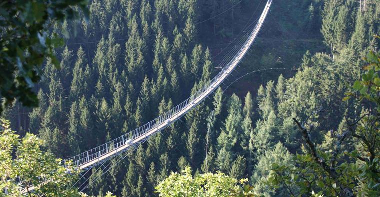 Starke Stahlseile sorgen für maximale Sicherheit auf der einhundert Meter hohen Brücke