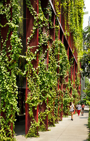 Oasia Hotel - grüne Fassade