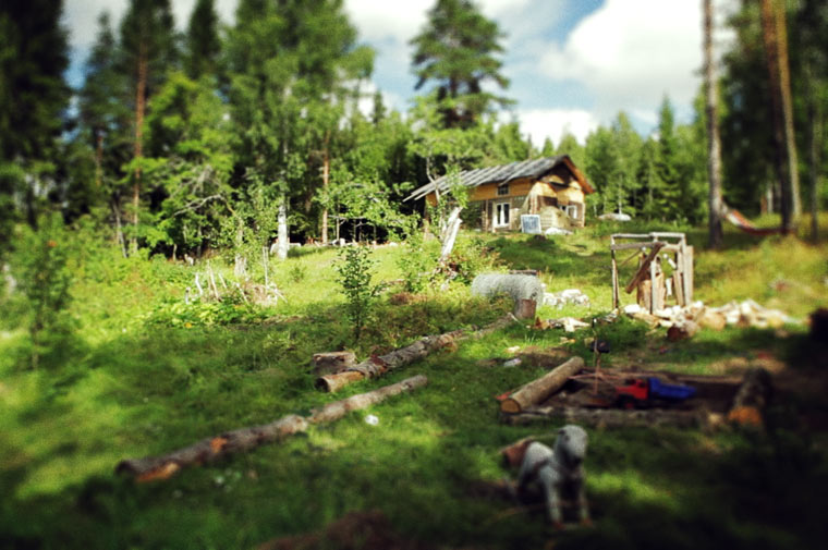 Eine Familie zieht in den Wald