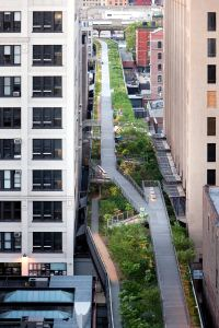 High_Line_falcone_flyover_1_2_300x200