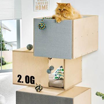 Geschenk für die Katze in Türchen Nr. 19
