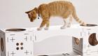 Motivierendes Katzenhaus und recyclebare Katzenklo