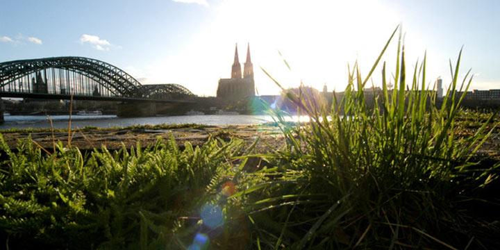 Die grünen Seiten von Köln kennenlernen