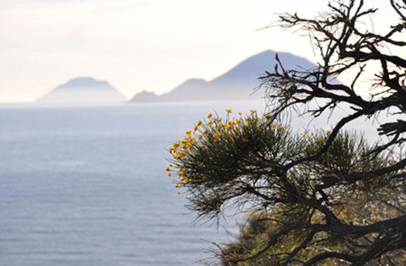 Reisetipp im Juni: Die kulinarische Insel Salina