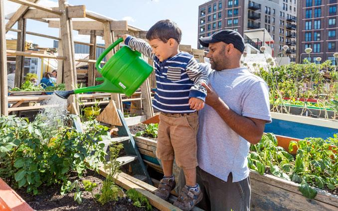 Der Skip Garden inst ein mehrgenerationen Projekt