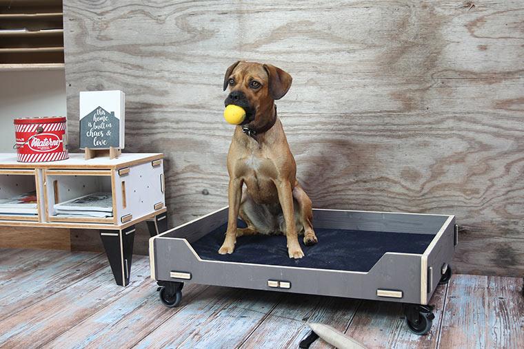 Hundebett mit Stecksystem