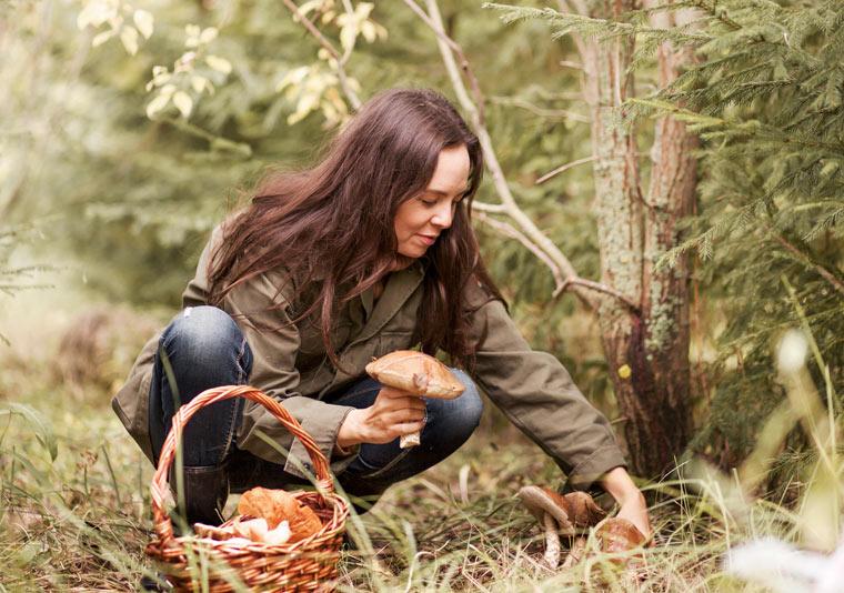 Geschenkideen: Waldspaziergang mit gemeinsamen Pilze-sammeln