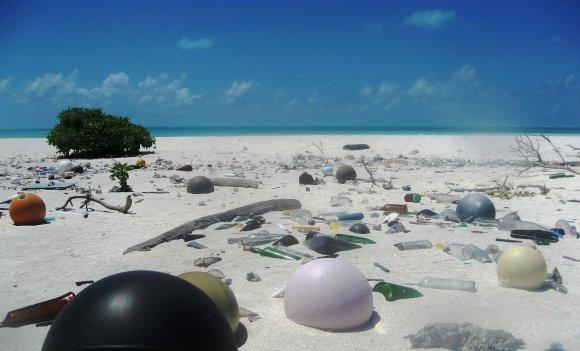 Plastikmüll im Meer: Ausstellung zeigt verheerende Folgen
