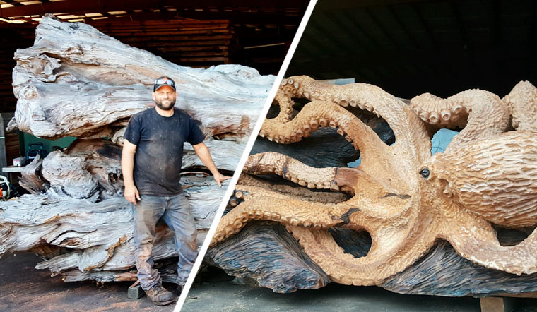 Riesen Octopus entspringt Mammutbaum