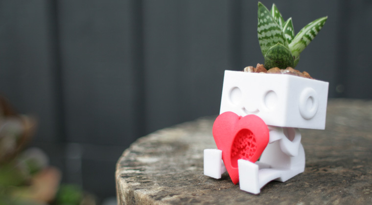 Kleine bepflanzte Robotter
