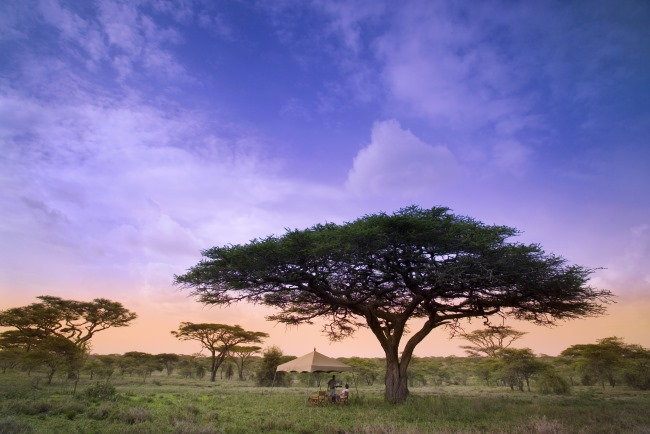 Nachhaltiger Tourismus und das Herz Afrikas entdecken mit &Beyond