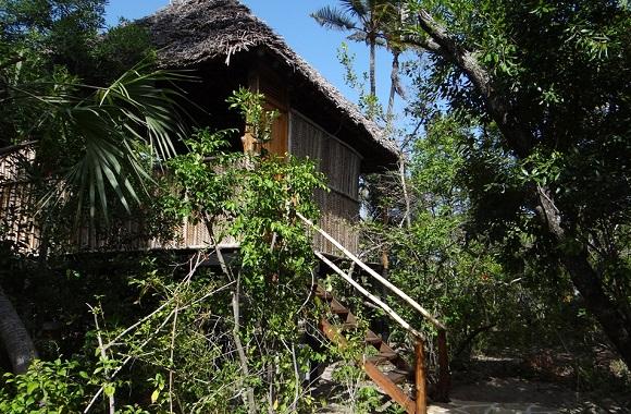 Nachhaltiger Tourismus: Wohnen in der Tembo Kijani Pangani Ecolodge & auf Safari in Tansania gehen