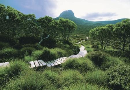 Sanfter Tourismus: Tasmaniens Nationalpark auf Wander-Tour entdecken