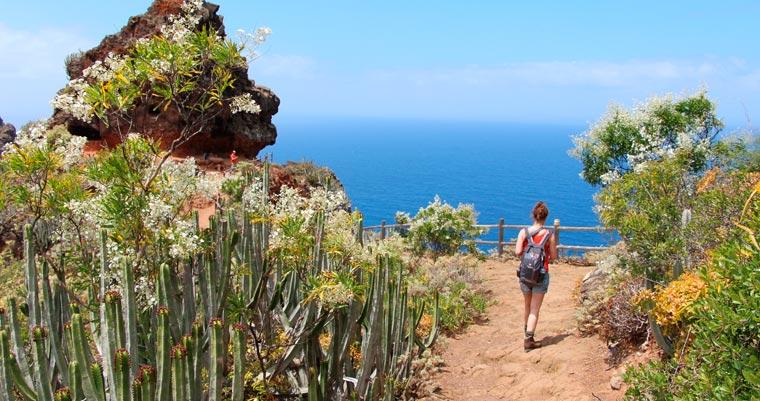 Wussten Sie, dass Teneriffa, die größte der Kanarischen Inseln, fast zur Hälfte aus Naturschutzgebieten besteht?
