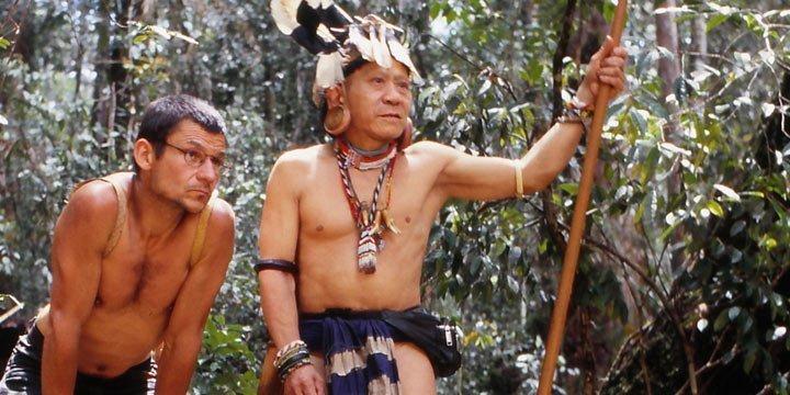 Geldwäsche und Korruption im Regenwald