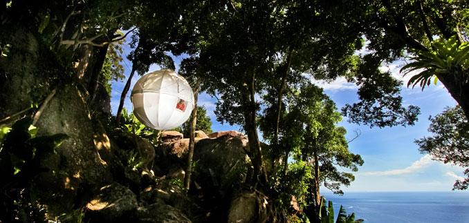 Eine herrliche Aussicht im Cocoon Tree genießen