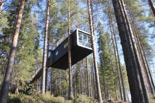 Nachhaltig und umweltfreundlich: Urlaub in Schweden und größtem Baumhaus der Welt.