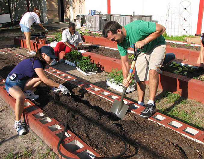 Urban Gardening so werden Beete angelegt