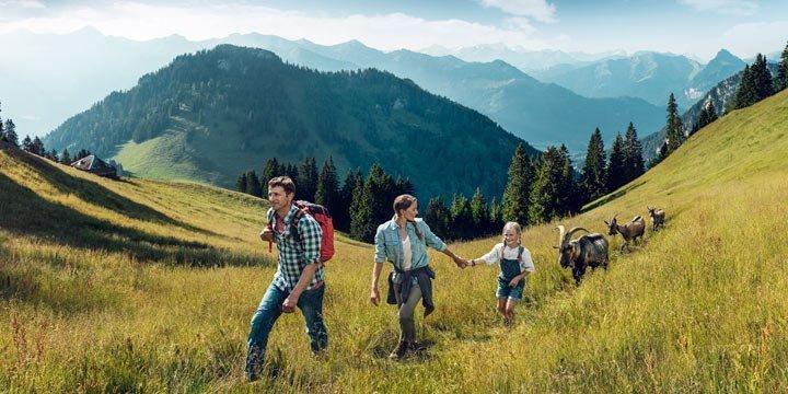 Unvergesslicher Sommerurlaub auf der »Schwiizer« Alp