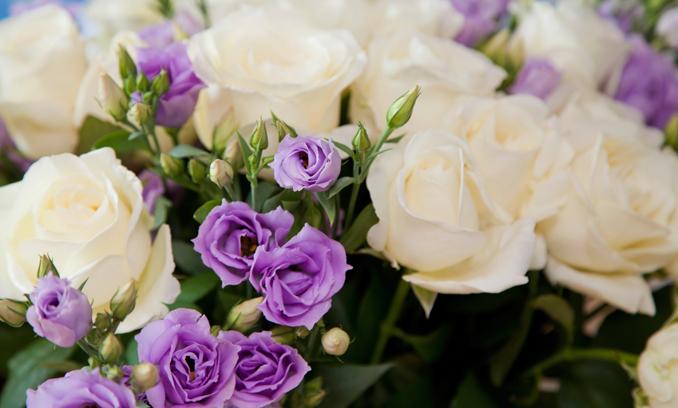 Valentinstag Rosen Blumen Fairtrade