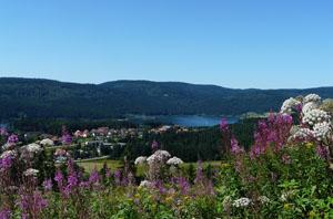 Die Schluchten und Seen im Schwarzwald bieten eine atemberaubende Kulisse zum Wandern © I.Barelds