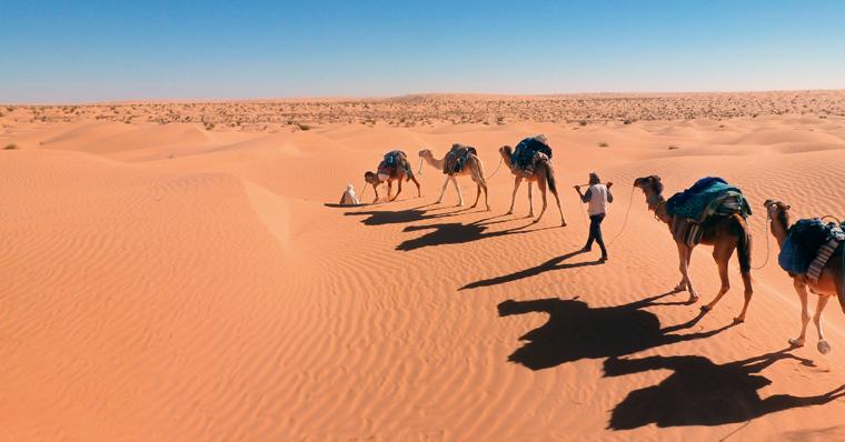 Weit und breit nichts außer die erholsame Ruhe der Sahara genießen