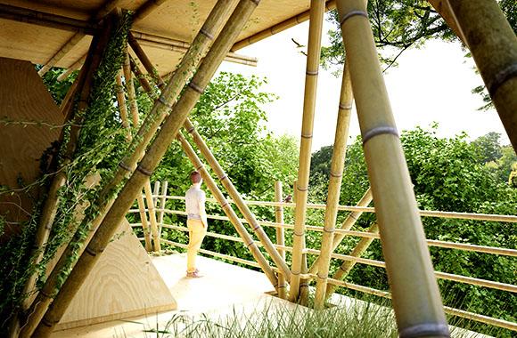 Abenteuerurlaub im Bambus Baumhaus-Hotel