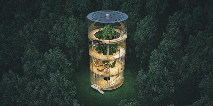 Perfekter Rückzugsort im Baumhaus aus Glas