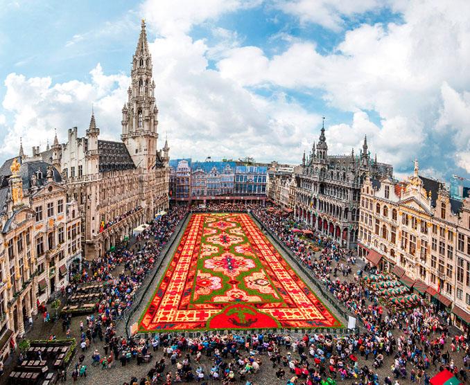 Auf dem Brüsseleer Grand Place wurde ein Teppich aus 750.000 Begonien gelegt © Thill