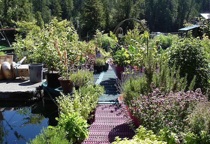 Ein selbstversorger Garten auf der Insel