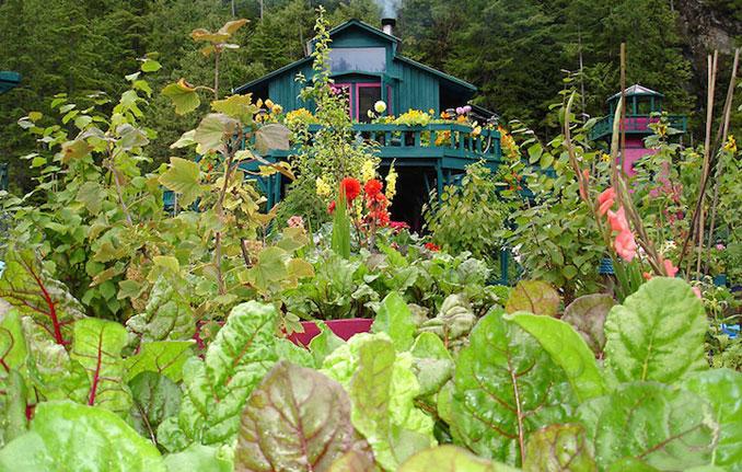 Der grüne Garten und das bunte Haus