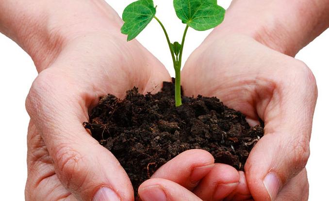 Nachhaltigkeit eco woman
