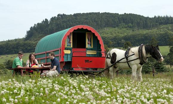 Die 1-PS Sause: Per Pferdewagen durch Irland
