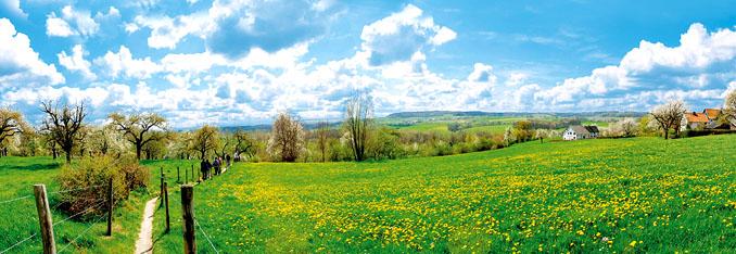 Das Limburger Heuvelland ©Tourismusbüro Limburg