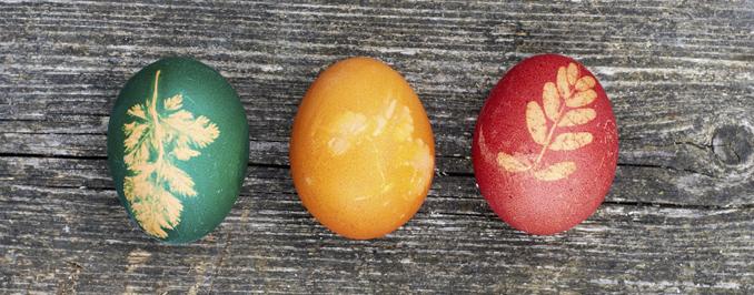 Ostereier färben bio