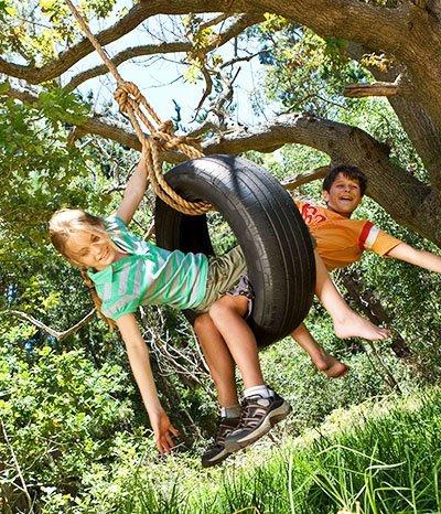 Spielen und Toben bis die Bäume wackeln
