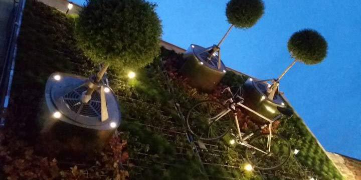 Weltpremiere: Waagerechte Bäume und hängende Weinberge
