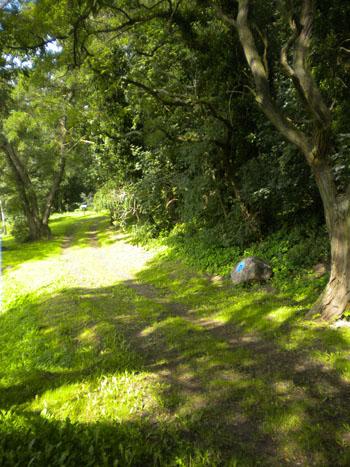 Der Weg zur Slawenburg wird ein leichter sein. Durch dichtes grün lässt es sich schön spazieren