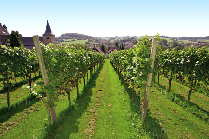 Neben dem Kuchen gibt es auch exquisiten Wein ©Tourismusbüro Limburg