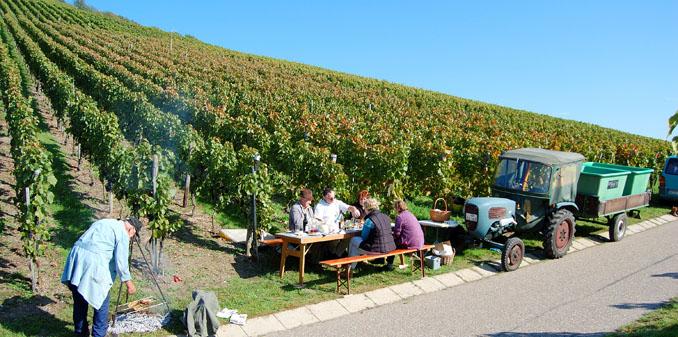 Urlaub in Weinbaugebieten. Vielfältig und sehr genußvoll, denn die gastgebenden Bio-Winzer haben einiges zu bieten ©Armin Vogel (CC BY 2.0)