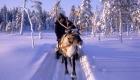 Wintervergnügen leicht gemacht!