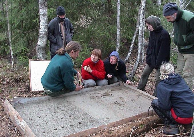In Beton gegossen lassen sich die Spuren von Mensch und Tier gut unterscheiden © Wildnisschule Teutoburger Wald