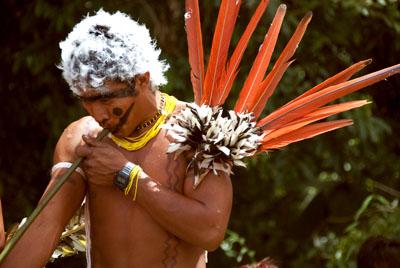 Die Yanomami versorgen sich selbst durch Jagen, Sammeln und Fischen, aber auch durch den Anbau verschiedener Feldfrüchte in großen Gärten.