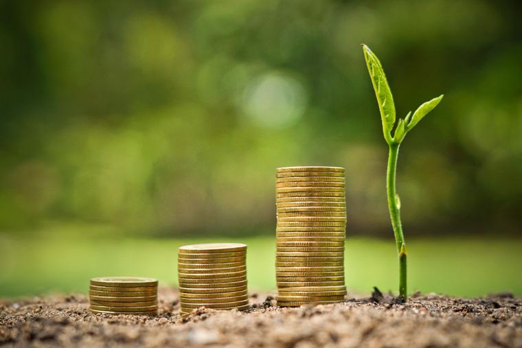 In Nachhaltigkeit investieren