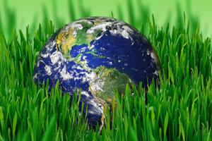 Ökologie und Ökonomie vereint. Nachhaltige Investitionen zahlen sich aus