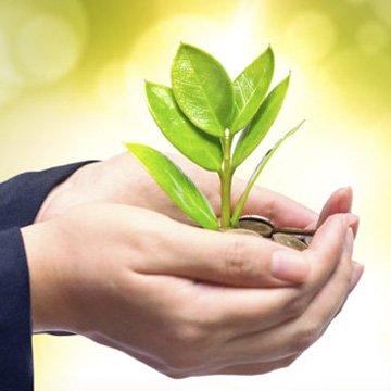 Transparenz bei Nachhaltigkeitsbank