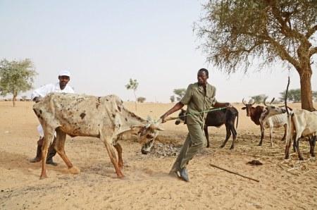 Allianz und Finanzspekulation im Agrarsektor: Aktion von Oxfam.