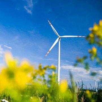Klimaschutz mit nachhaltigen Geldanlagen