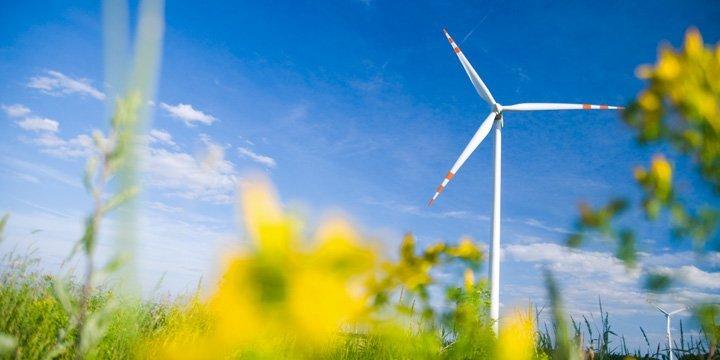 Mit nachhaltigen Geldanlagen das Klima schützen